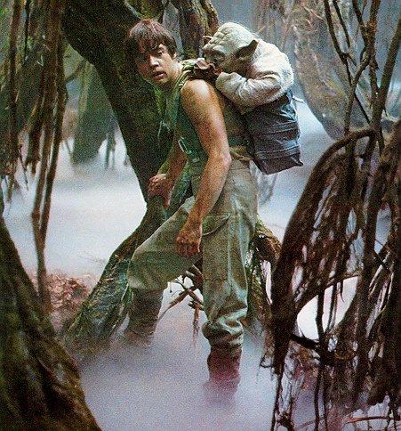 Luke Skywalker babywearing Yoda