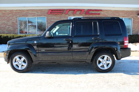 2009 Jeep Liberty Rocky Mountain in Lake Bluff, IL