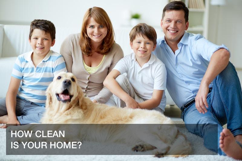 dog health tips