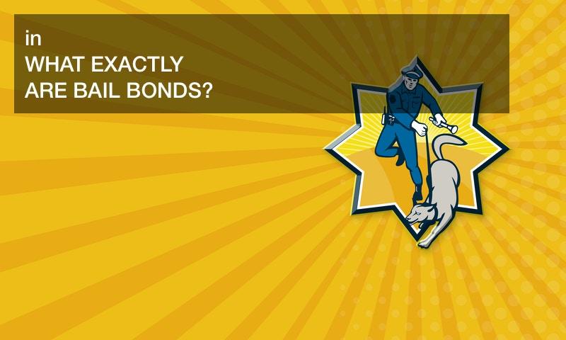 bail bonds 101