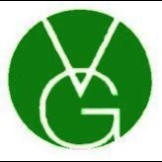 VG Link Pte Ltd
