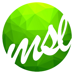 MSL GROUP — Tax, Accounting, and Audit