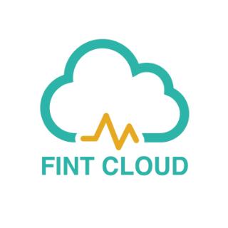 Fint Cloud CPA Professional Corporation