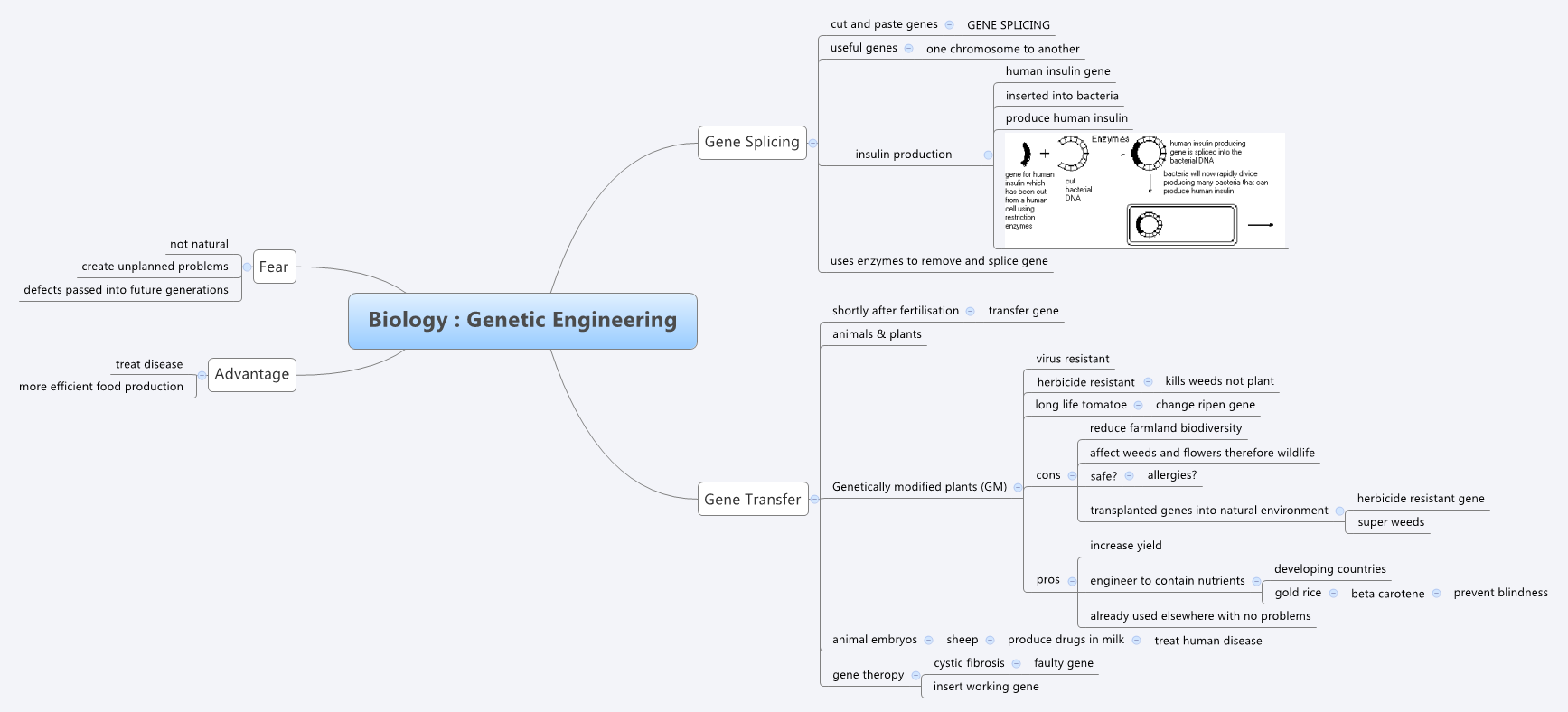 biology   genetic engineering - xmind