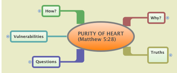 PURITY OF HEART         (Matthew 5:28)