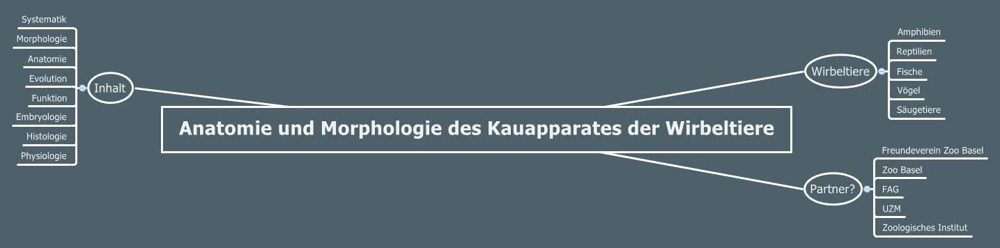 Anatomie und Morphologie des Kauapparates der Wirbeltiere - XMind ...