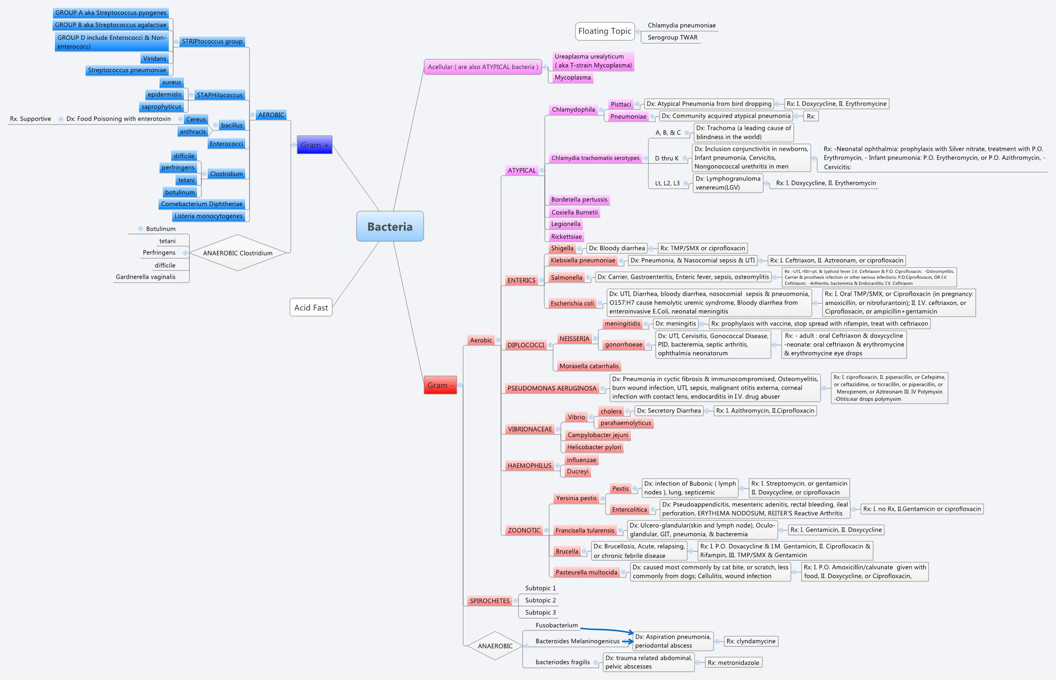 Bacteria - XMind - Mind Mapping on