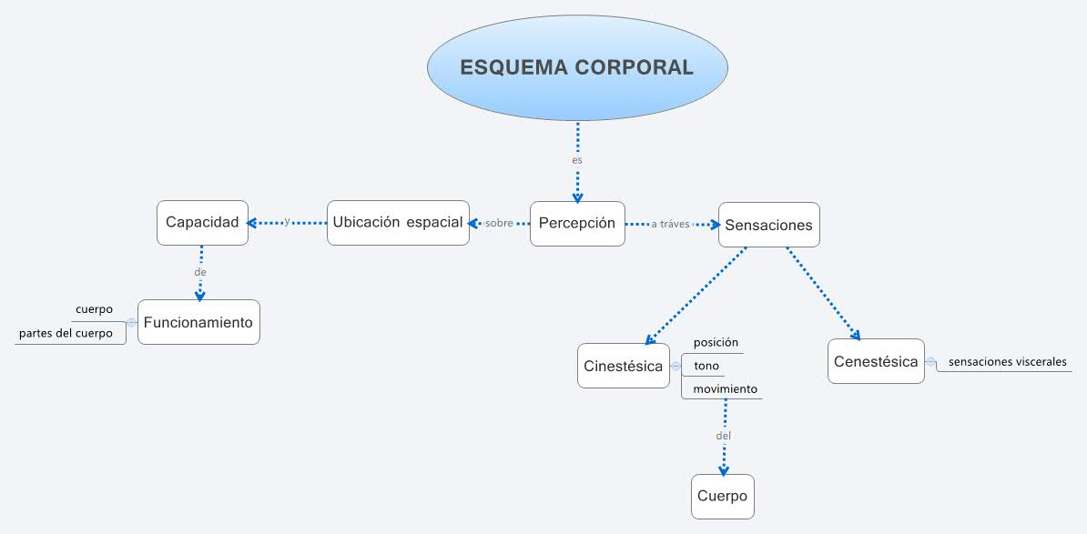 ESQUEMA CORPORAL - XMind: The Most Popular Mind Mapping