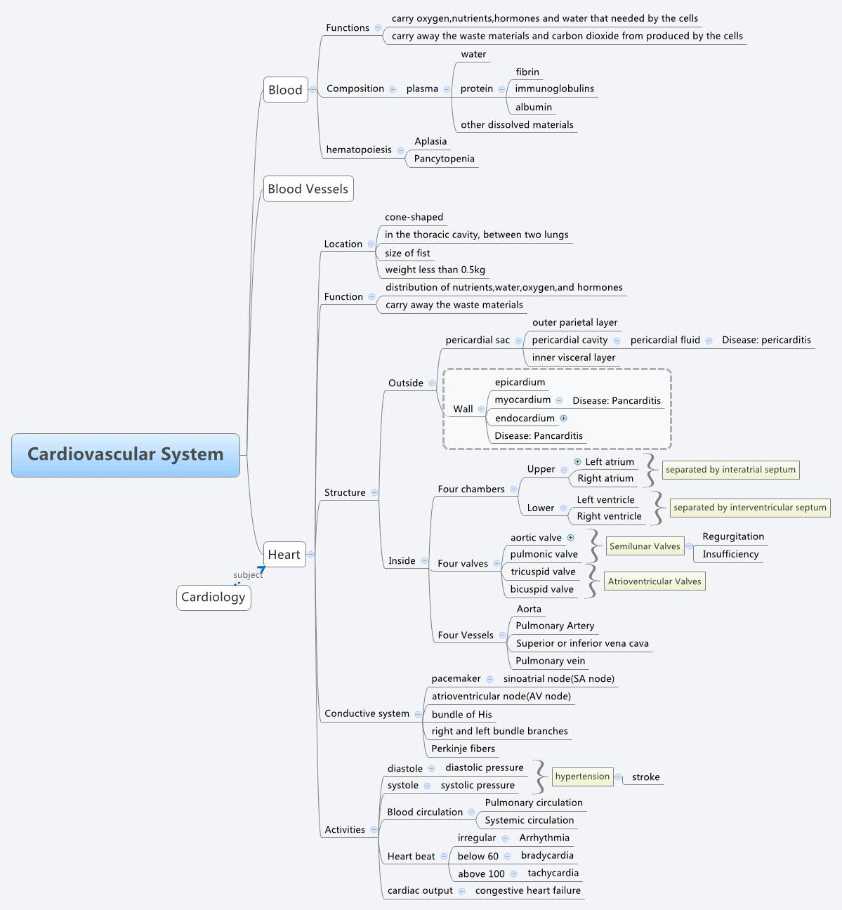 Cardiovascular System Xmind Mind Mapping Software