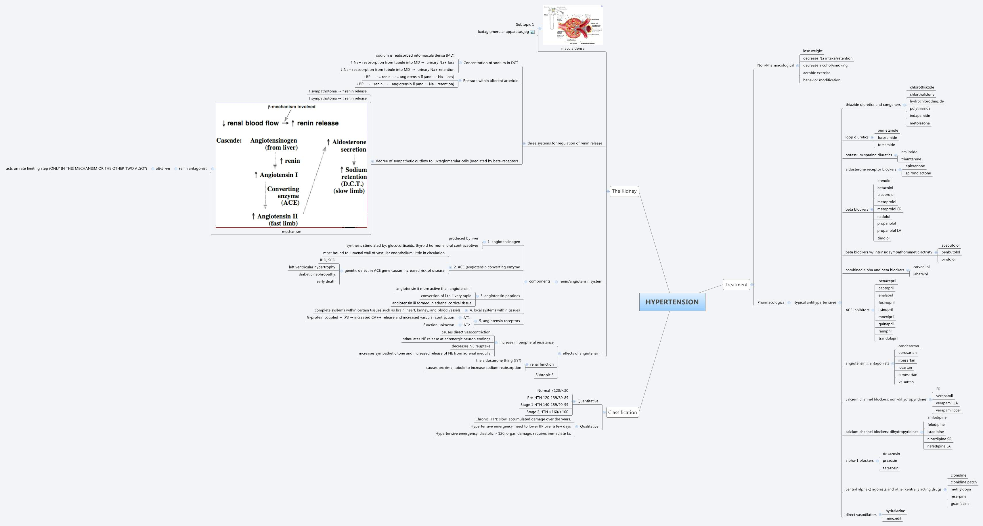 Renal Failure Concept Map.Chronic Kidney Disease Xmind Mind Mapping Software