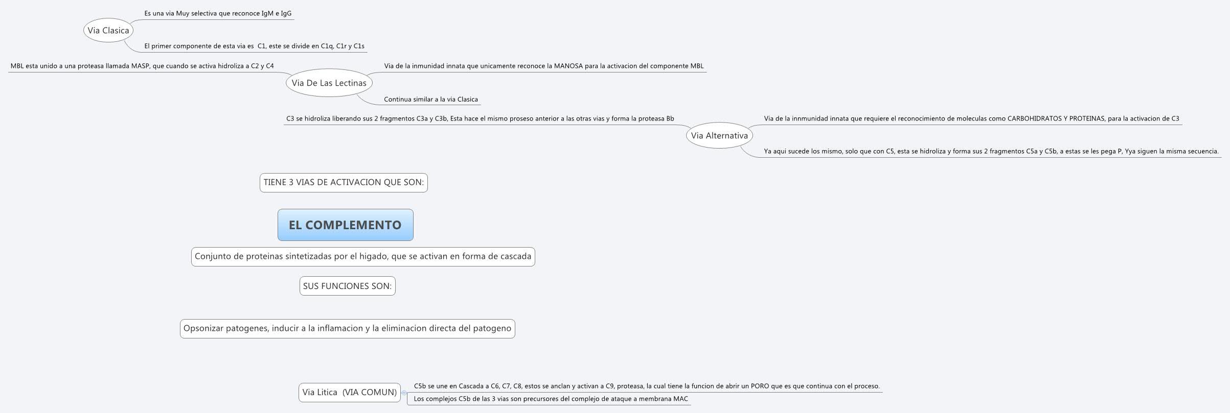 EL COMPLEMENTO -- XMind Online Library