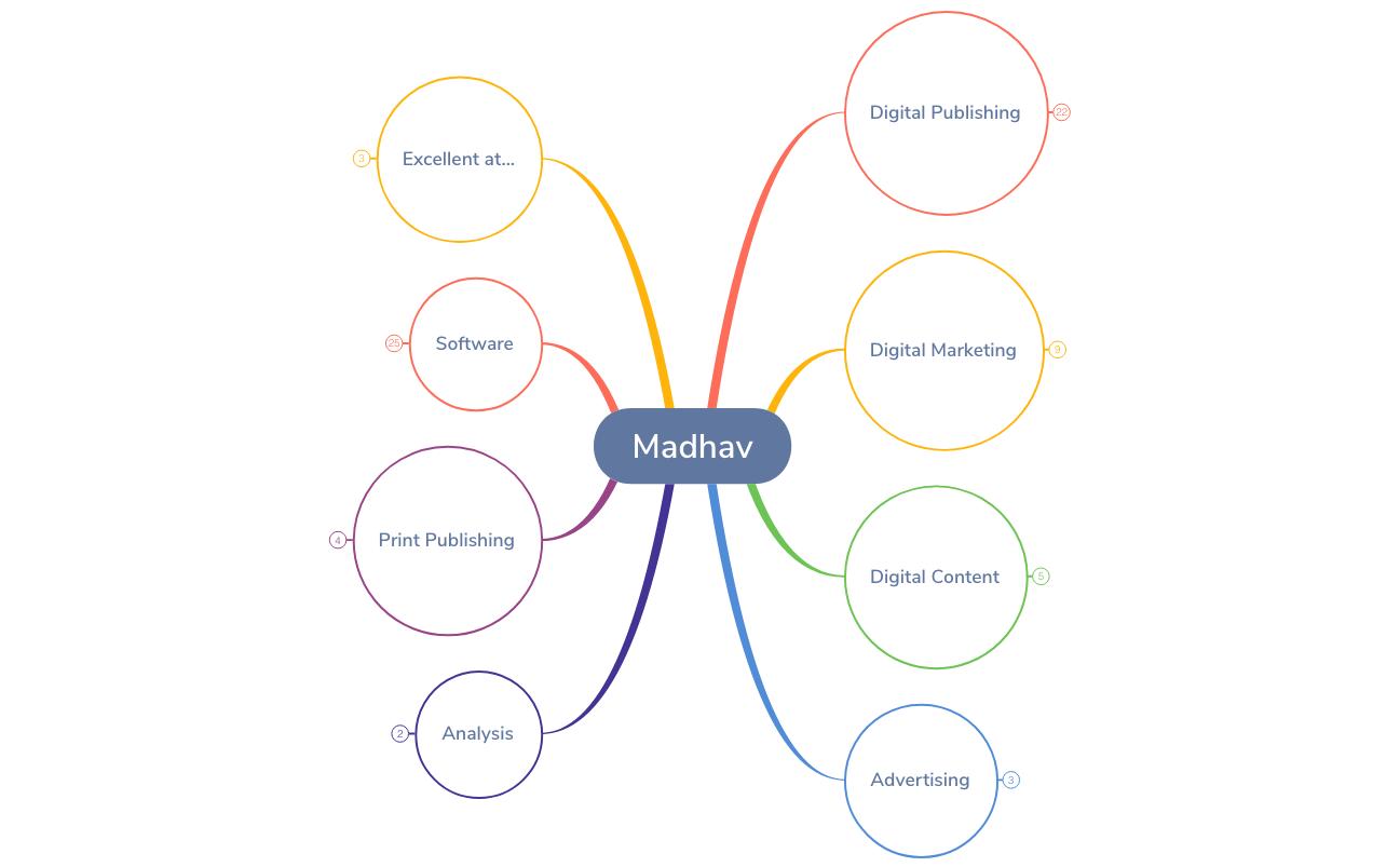 Madhav Portfolio Timeline