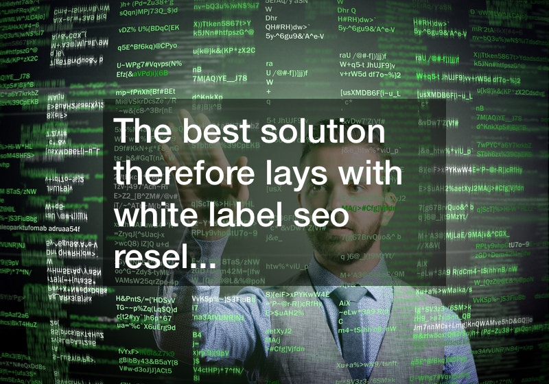 white label seo program