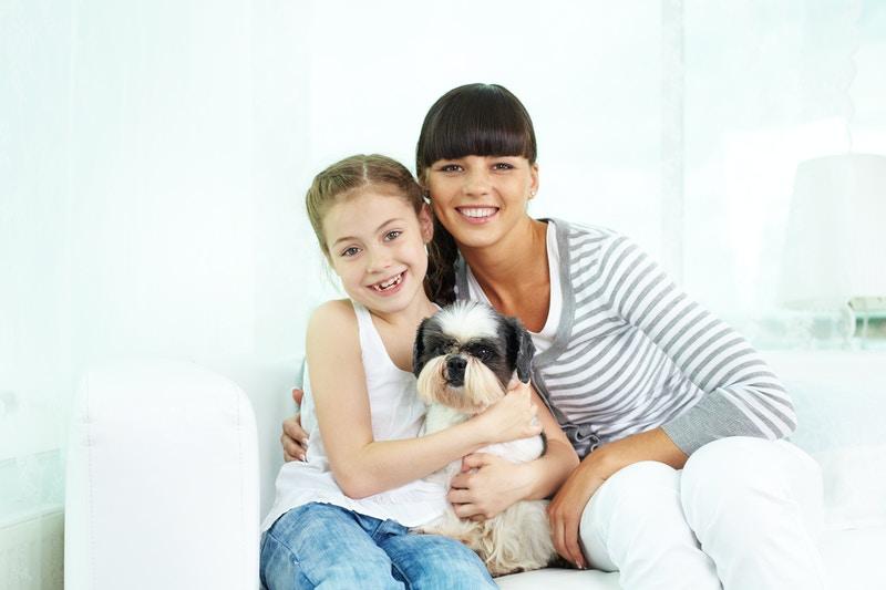 Dog health uk