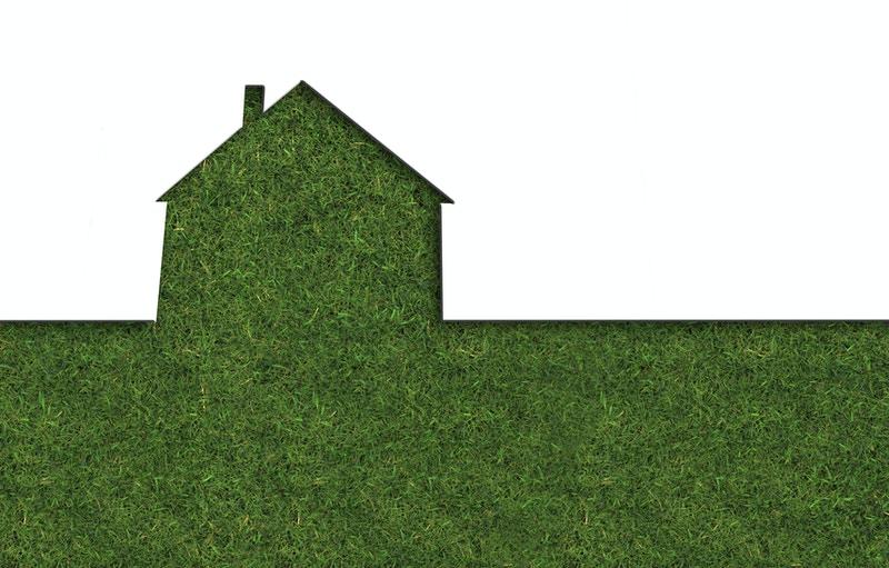Home restoration franchise