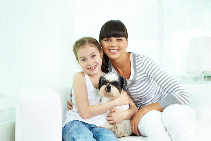 Cancer treatment for pets tucson