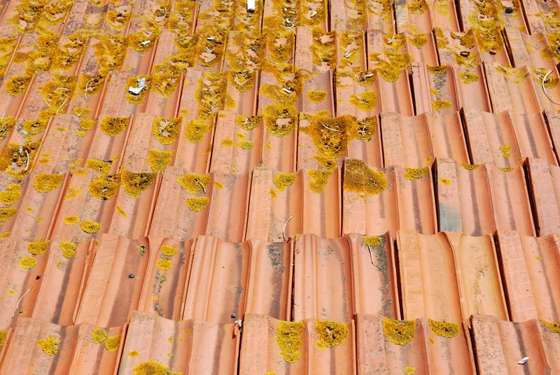 Home depot roofing shingles