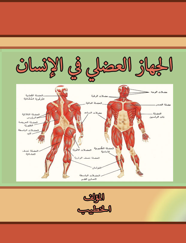 دراسة الجهاز العصبي عند الانسان