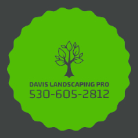 Davis landscaping pro