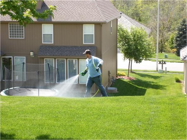 Blanket-weed-spray-herbicide-broadleaf-weed-control-lawn-care-program