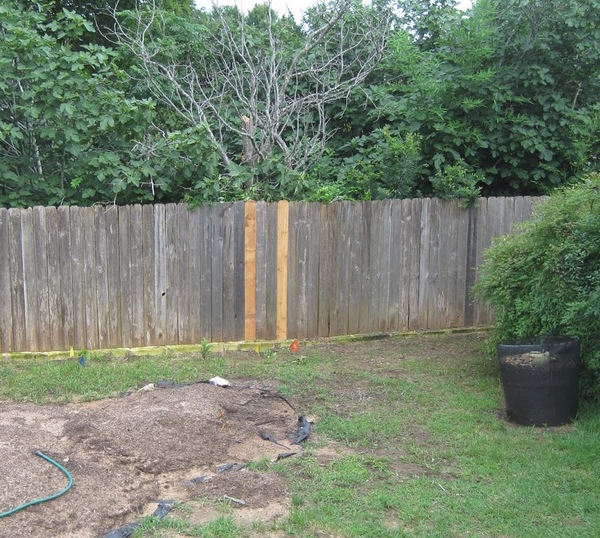 Minor_fence_repair