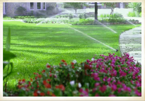 Irrigation 13