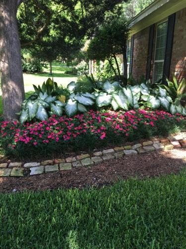 Landscaping service waco texas