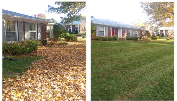 Jk lawn care marcellus mi for Fall yard clean up checklist