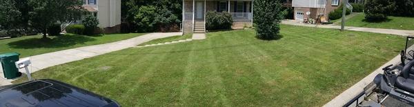 Inkedbruce's front yard li