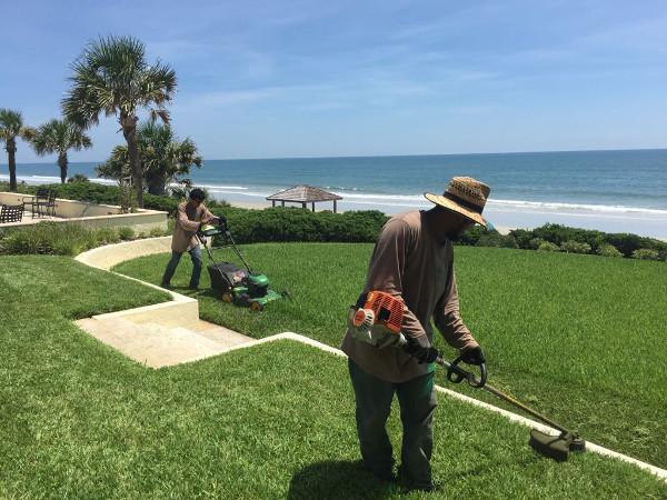 Lawn maintenance beach