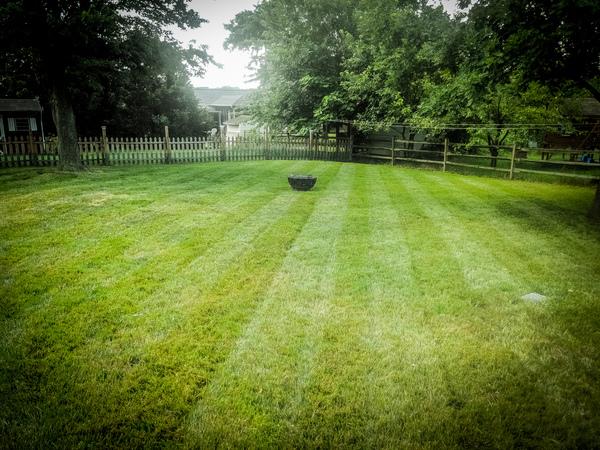Chirs lawn stripes 2