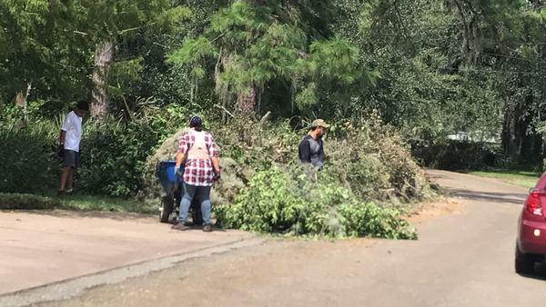 Removing debris after storm