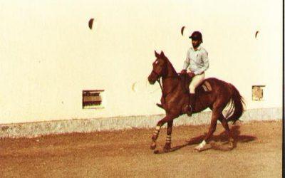 Horses, friends & the AP Riding Club