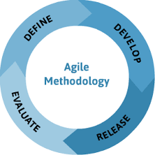 The Agile Methodology in an IT Environment