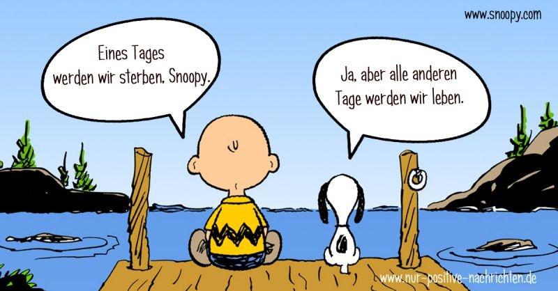 Eines Tages werden wir sterben, Snoopy. Spruch   Zitat / Quelle: www.snoopy.com