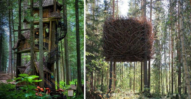 Baumhäuser - Die schönsten Baumhäuser der Welt