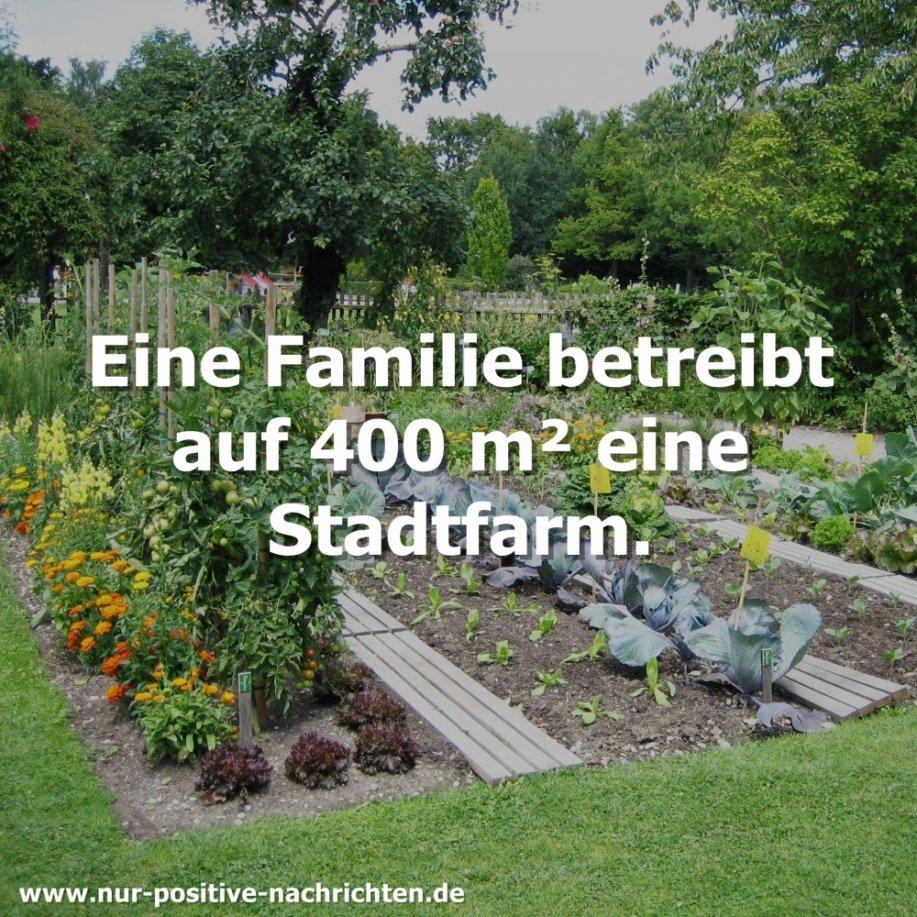 Selbstversorgung: Familie betreibt auf 400 m² eine Stadtfarm (Video)