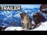 Planet Earth 2 - Atemberaubender Trailer