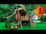 Die 10 schönsten Baumhäuser im Video