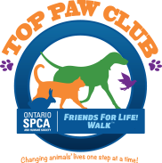 spca top paws