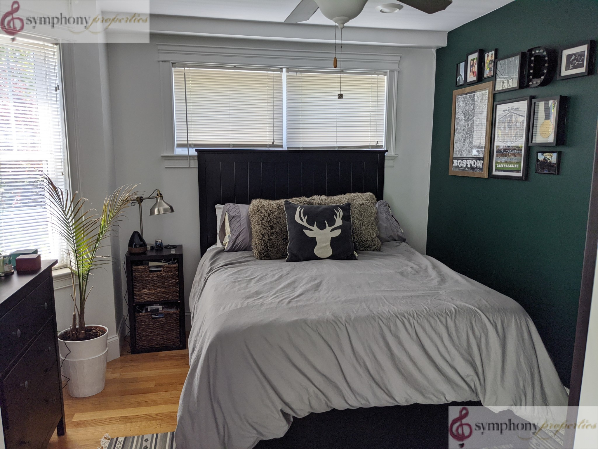 5 Beds, 2.5 Baths apartment in Boston, Allston for $5,200
