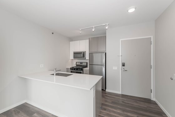 STUDIO UNIT IN THE SOUTH LOOP