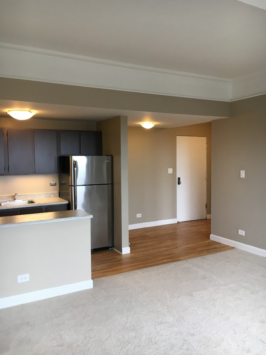LINCOLN PARK! ROOMY STUDIO CLOSE TO THE LAKE!