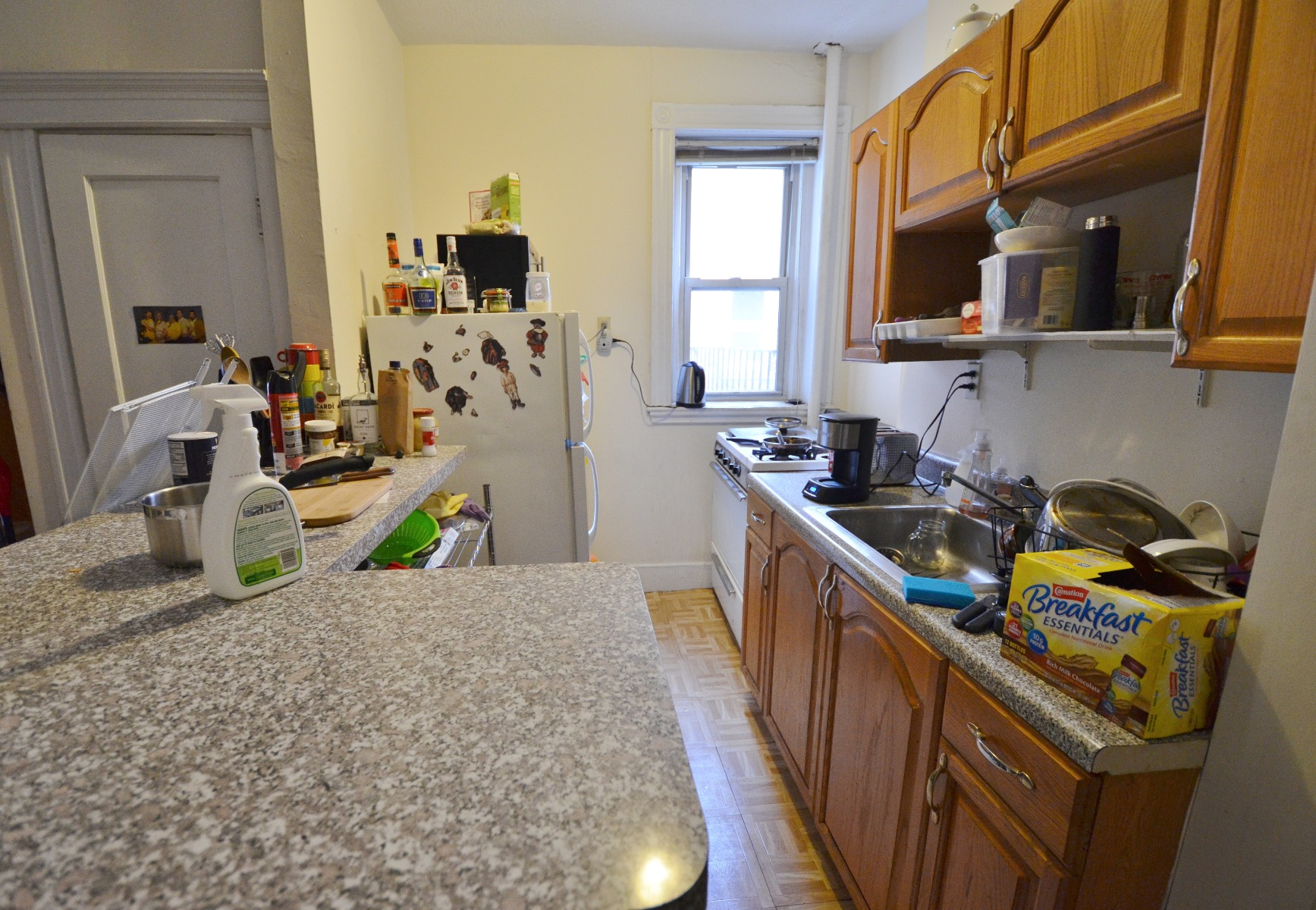 Avail 9/1 - Stunning Sunny 2BR Split on Peterborough St