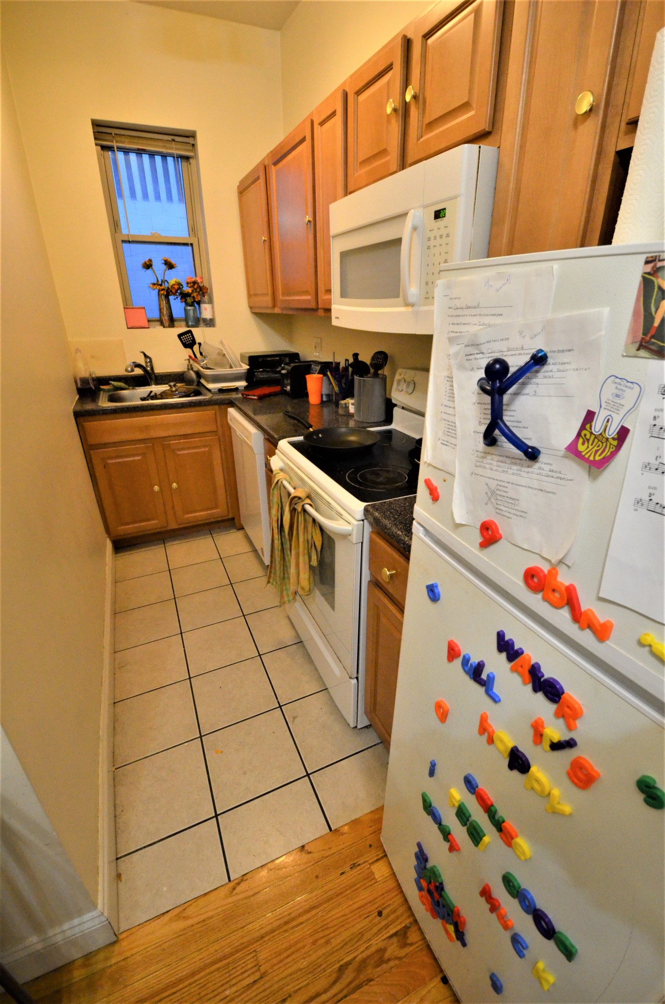 avail 9/1 - Spacious, Renovated, Gorgeous 1 BR split on Haviland