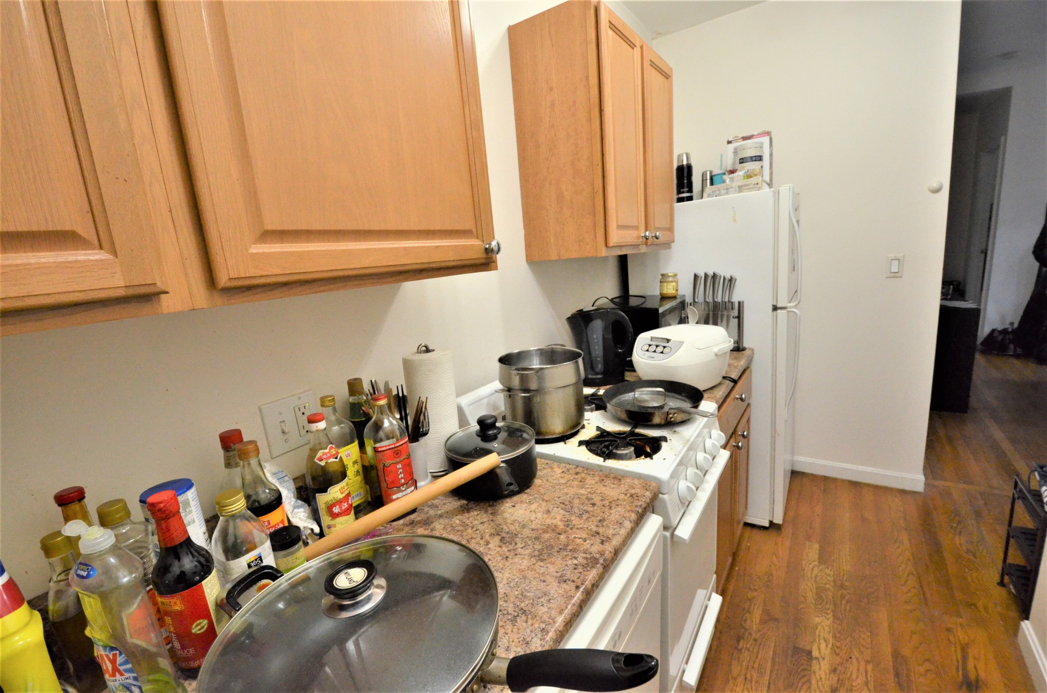 AVAIL 9/1 - Gorgeous, Spacious, Updated, Sunny 2 Bedroom on Westland