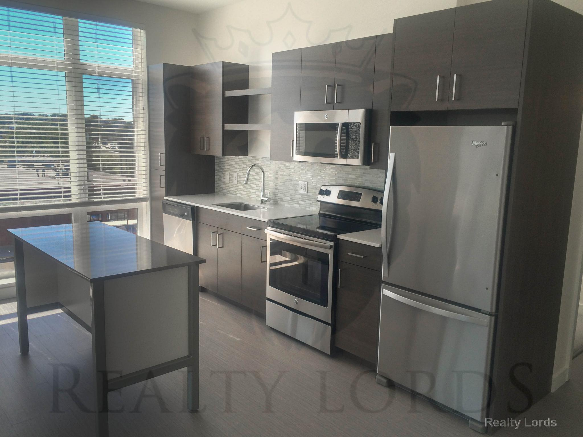 Luxury Complex JFK/UMASS Dorchester