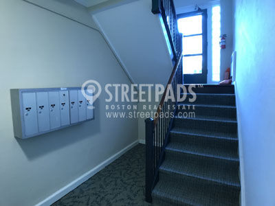 Pictures of  property for rent on Saint Paul, Brookline, MA 02446