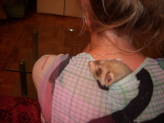 Petite sieste au chaud...