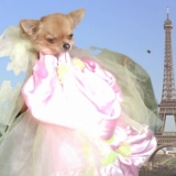 Paris = princesse